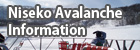Niseko Avalanche Information