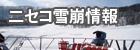 ニセコ雪崩情報